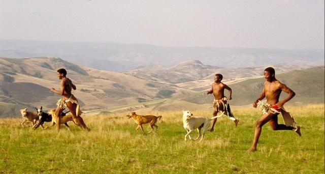 Barefoot Persistence Hunting.jpg