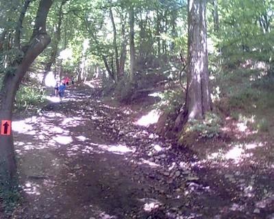 Trail de Namur_11.jpg