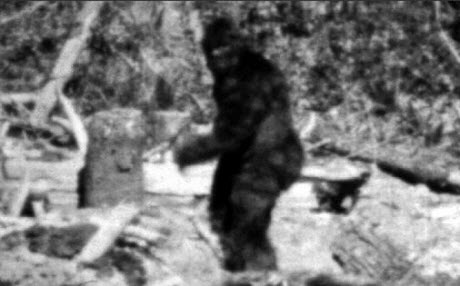 http://thebarefootrunners.org/sites/default/files/bigfoot2.jpg